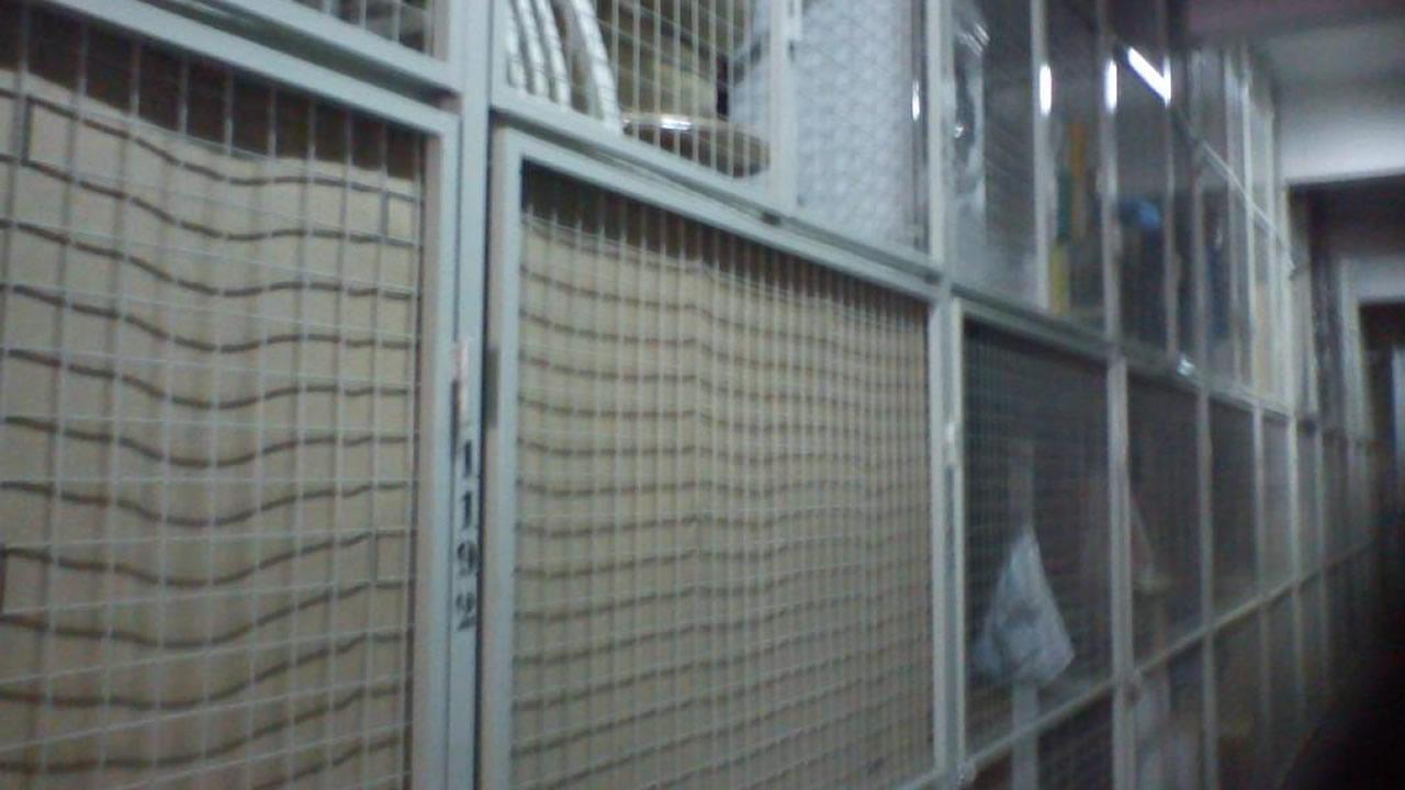 Mudanzas Y Fletes 2001 # Guarda Muebles Boedo